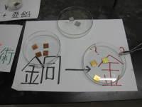 Josai_2009_shiinoki_020